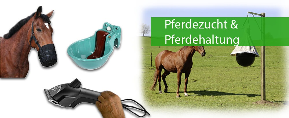 Pferdezucht & Pferdehaltung