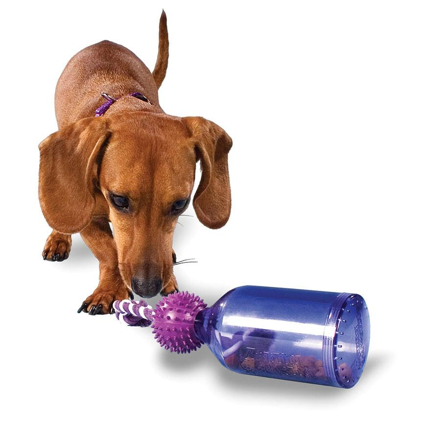 Busy Buddy - Tewerkstelling en spelen voor honden