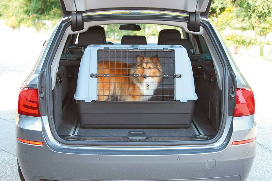 Dog transport boxes from Petsafe
