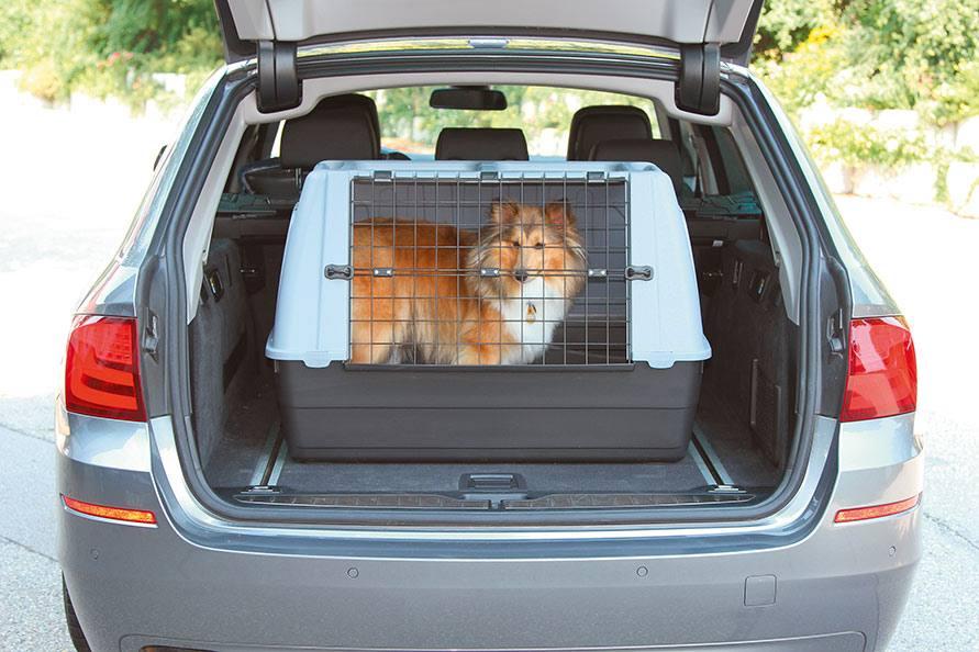 Transportkisten voor honden van PetSafe