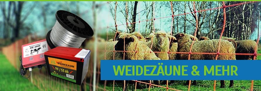 Weidezaun