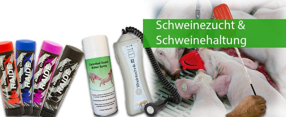 Schweinezucht & Schweinehaltung