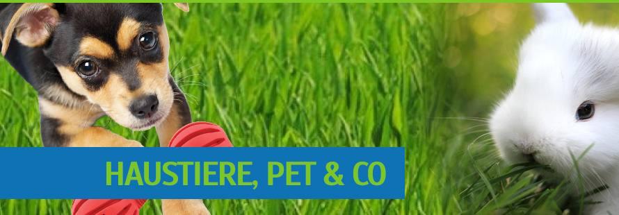 Pet & Kleintier