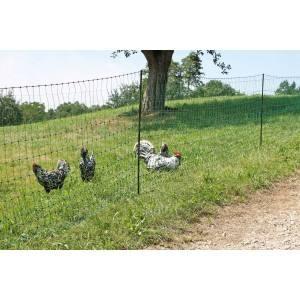 Geflügelnetz 50 m; 1,12 m hoch, Doppelspitze, grün nicht elektrifizierbar - Zaun für Hühner, Puten & Gänse