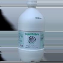 calgonit Mint forte 2500 ml