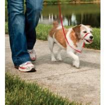 Easy Walk™-Kopfleine Max. 11 kg