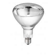 Infrarotbirne Philips 250 Watt weiß - Hartglaslampe