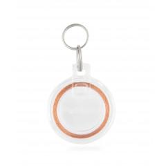 Schlüssel für Microchip Klappen