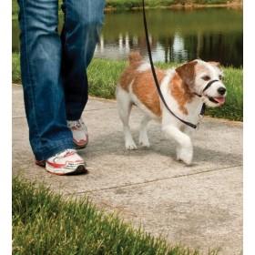 Easy Walk™- schwarze Kopfleine - für Hunde bis maximal 11 kg