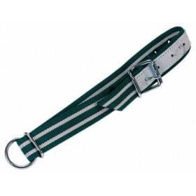 Halsband grün/weiß 130 x 4 cm, Rollschnalle, Ovalglied u. D-Ring