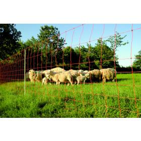 EURO-NETZ Extra mit Einzelspitze 90 cm x 50 m - Schafnetz, Schafzaun, Lämmernetz