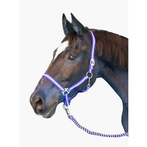 Nylon Halter hippo, size: Warmblood, various colors