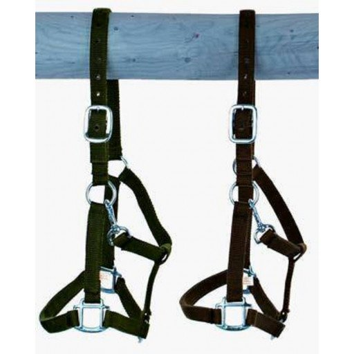 Belt Holster, size: Warmblood, extra strong with buckle
