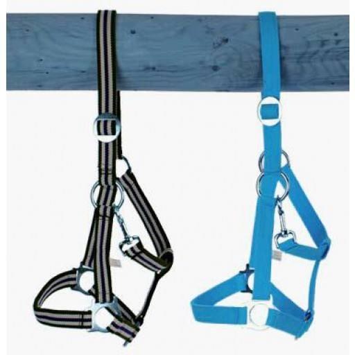 Belt Holster, size: Pony, adjustable