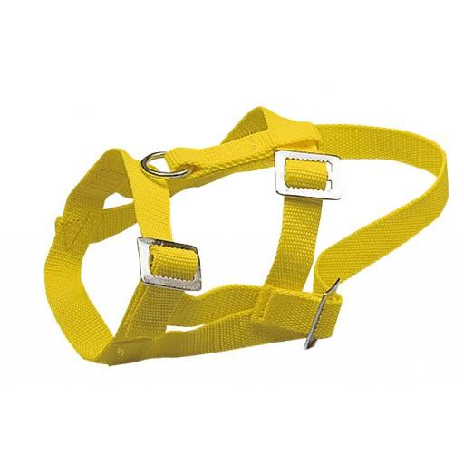 Head Halters for sheep, nylon