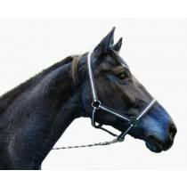 Nylon Halter Hippo size: whole blood, various colors