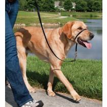 Easy walk™ head line 27 kg - 59 kg