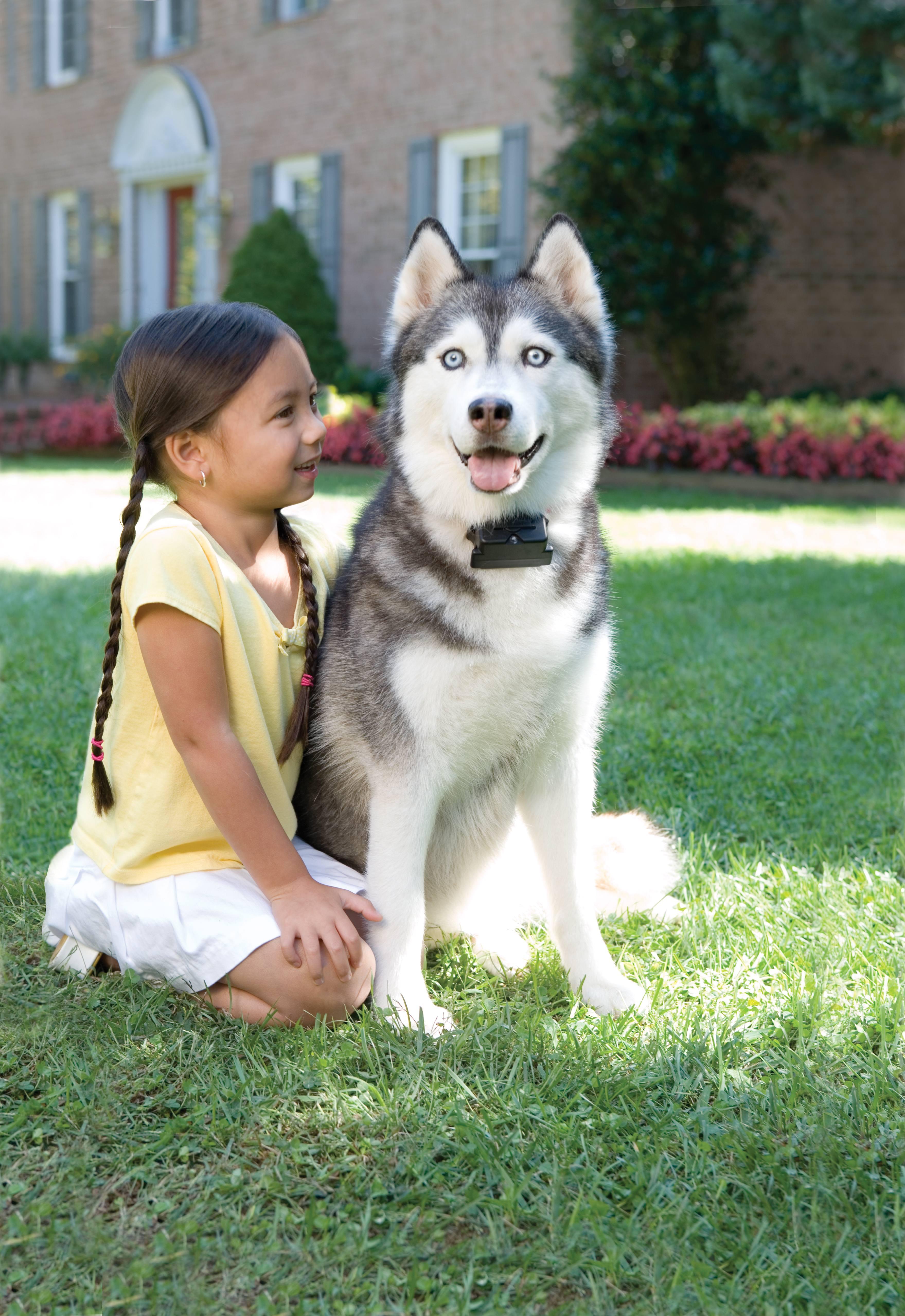 Berühmt Unsichtbarer Hundezaun Radio Fence Super von PetSafe &JX_83